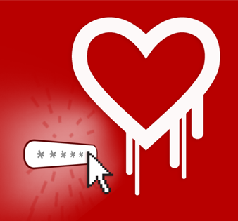 Image of The Heartbleed Bug